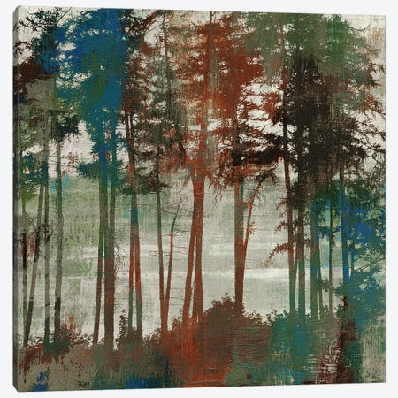 Spruce Woods I Canvas Print #PST704} by PI Studio Canvas Wall Art