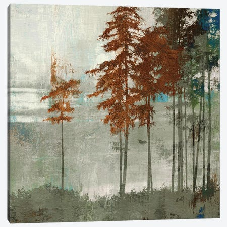 Spruce Woods II Canvas Print #PST705} by PI Studio Canvas Art