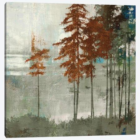 Spruce Woods II Canvas Print #PST705} by PI Studio Canvas Art