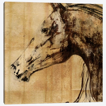 Stallion I Canvas Print #PST706} by PI Studio Canvas Artwork