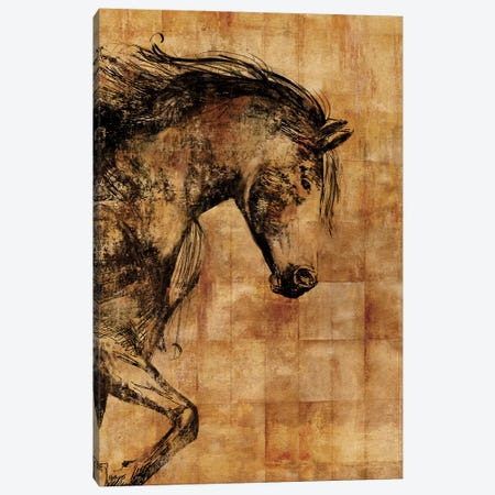 Stallion II Canvas Print #PST707} by PI Studio Canvas Wall Art