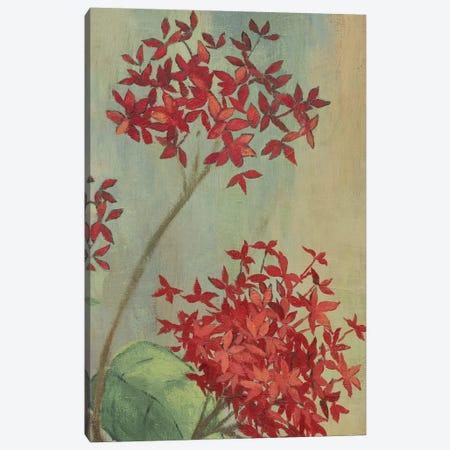 Summer Flowers II Canvas Print #PST723} by PI Studio Canvas Print
