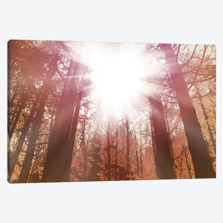 Sun Dance 3-Piece Canvas #PST724} by PI Studio Canvas Artwork