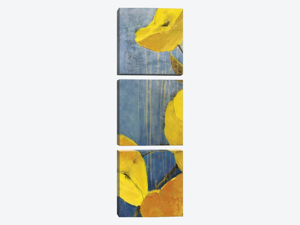 Sunshine II 3-piece Canvas Print