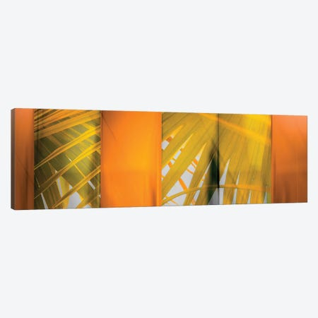 Tangerine And Cream Canvas Print #PST740} by PI Studio Art Print