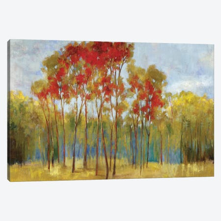 Touches Of Red Canvas Print #PST776} by PI Studio Art Print