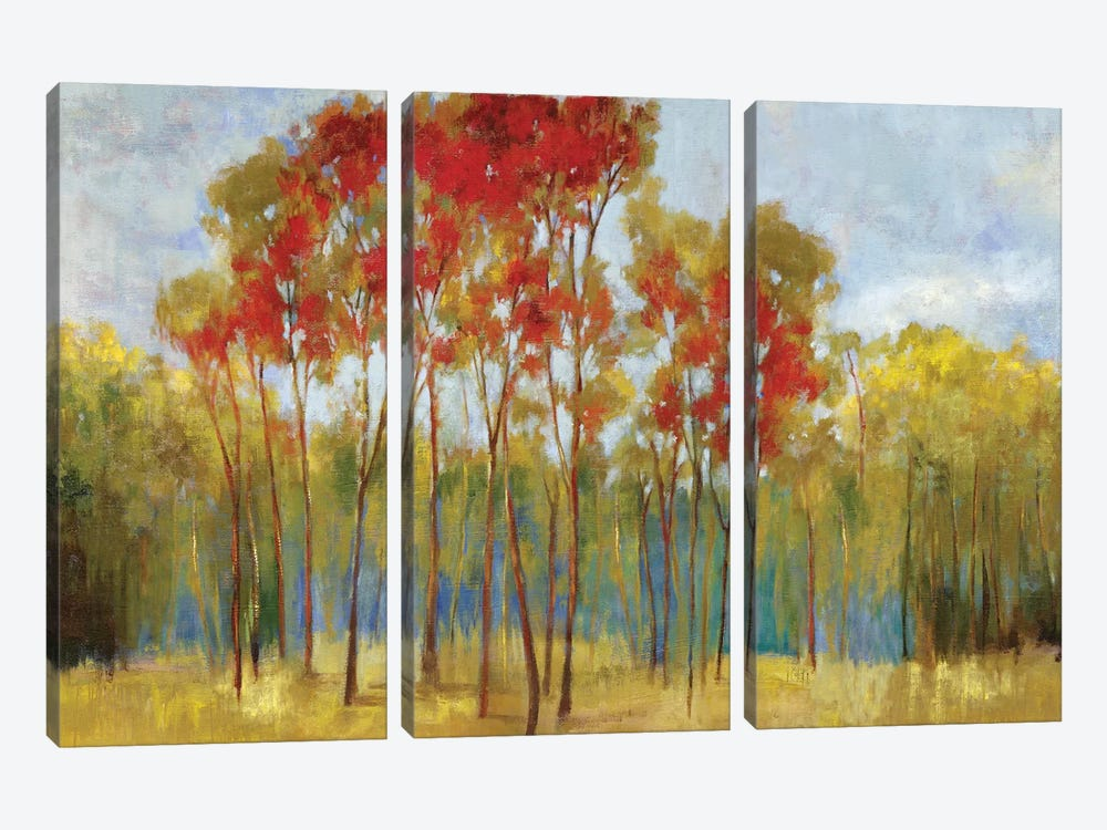 Touches Of Red by PI Studio 3-piece Canvas Wall Art