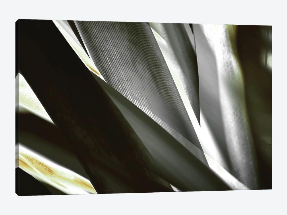 Transparent by PI Studio 1-piece Art Print