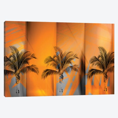 Tropicana Canvas Print #PST791} by PI Studio Canvas Wall Art