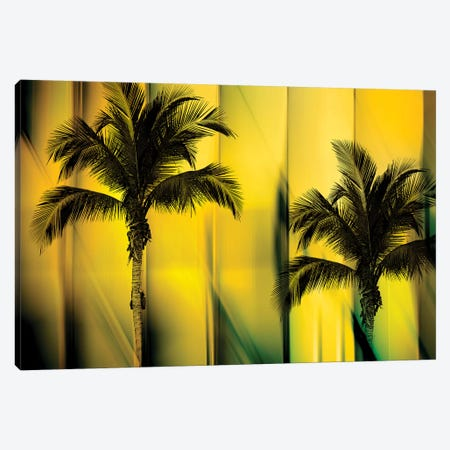 Two Palms Canvas Print #PST798} by PI Studio Canvas Wall Art