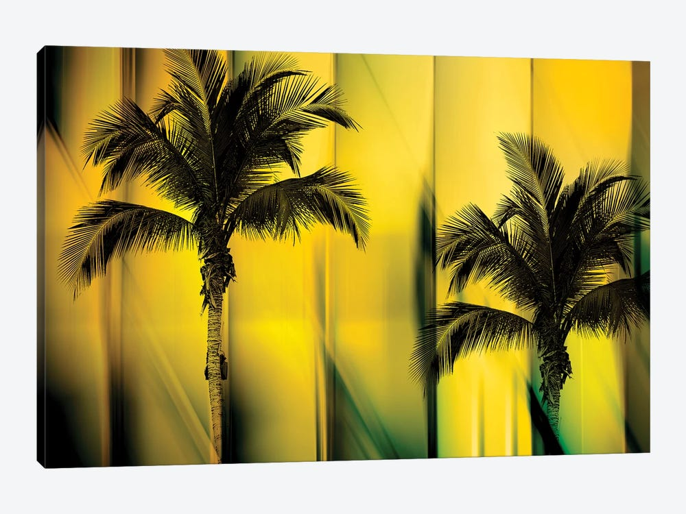Two Palms by PI Studio 1-piece Canvas Artwork
