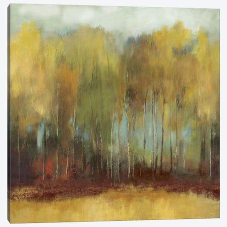 Whisper Fields Canvas Print #PST852} by PI Studio Canvas Art Print
