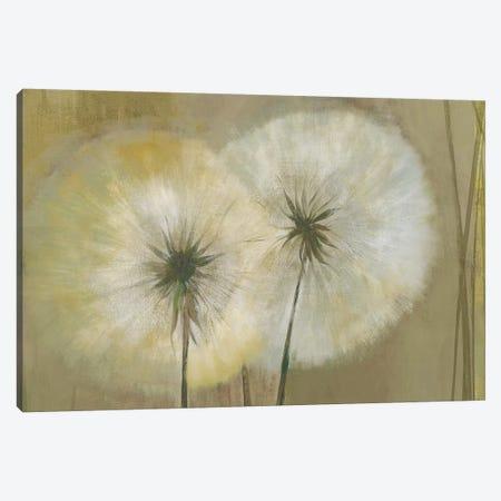 Whisper I Canvas Print #PST853} by PI Studio Canvas Art Print