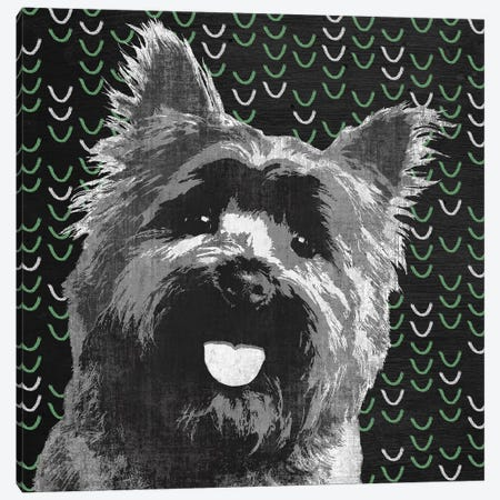 Yorkie Canvas Print #PST868} by PI Studio Canvas Wall Art
