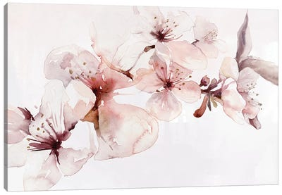 Watercolor Blossoms I Canvas Art Print