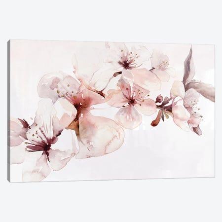 Watercolor Blossoms I Canvas Print #PST928} by PI Studio Art Print