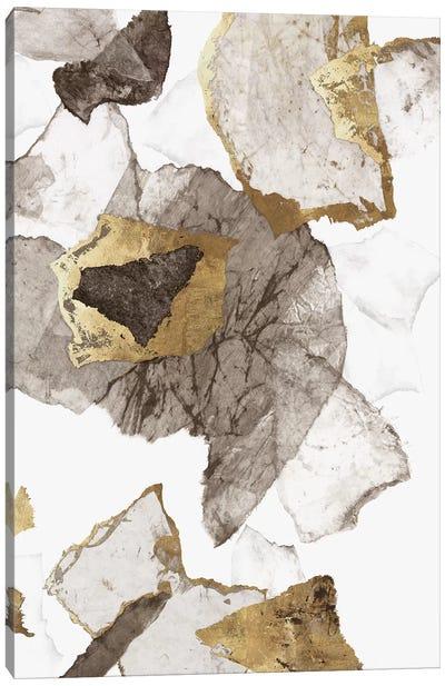 Amplified II  Canvas Art Print