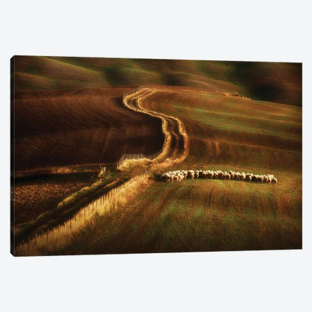 Crossing The Fields Canvas Print #PSV9} by Peter Svoboda Canvas Wall Art