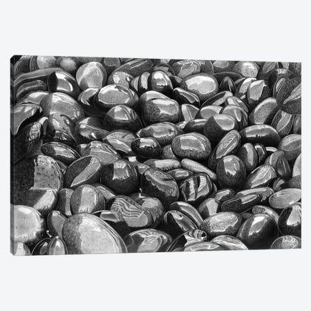 Wet Pebbles VI Canvas Print #PSW26} by Paul Stowe Canvas Art