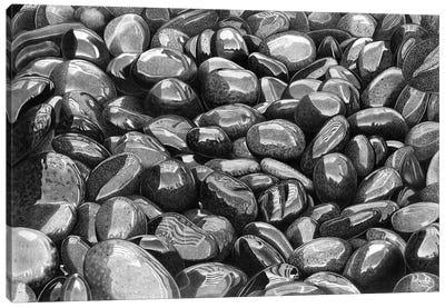 Wet Pebbles VI Canvas Art Print