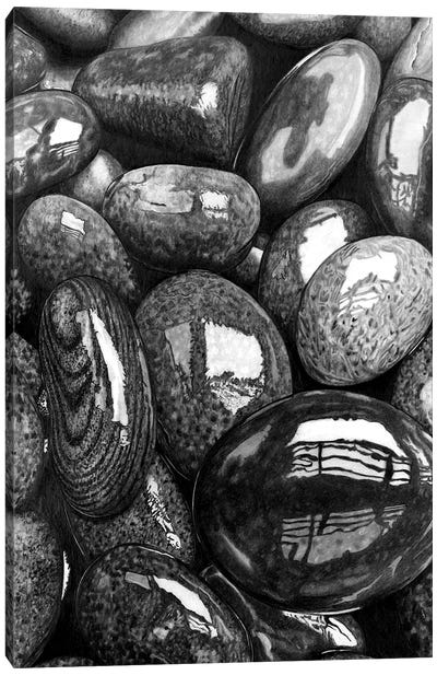 Wet Pebbles I Canvas Art Print