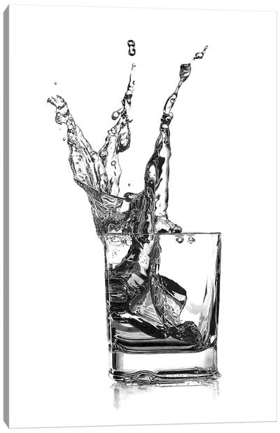 Double Whisky Splash Canvas Art Print