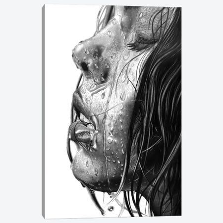 Wet Canvas Print #PSW48} by Paul Stowe Art Print