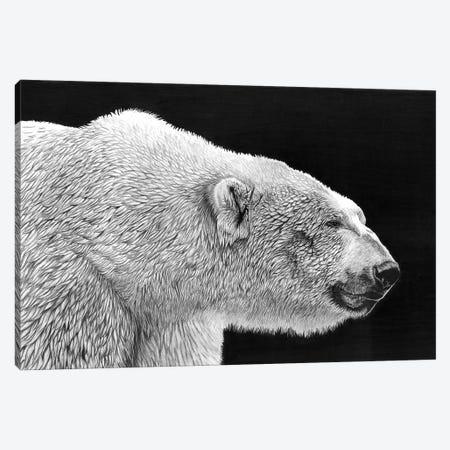 Polar Bear Canvas Print #PSW67} by Paul Stowe Canvas Art