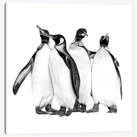 Penguins On The Town Canvas Print #PSW68} by Paul Stowe Art Print