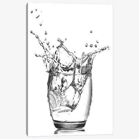 Vodka Ice Canvas Print #PSW7} by Paul Stowe Canvas Artwork