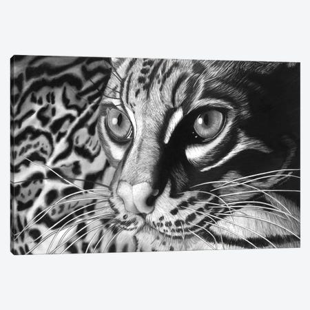 Ocelot Canvas Print #PSW83} by Paul Stowe Canvas Print