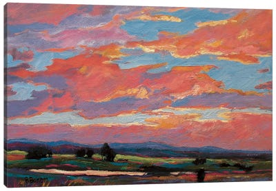 Pink Clouds Over The Foothills Canvas Art Print
