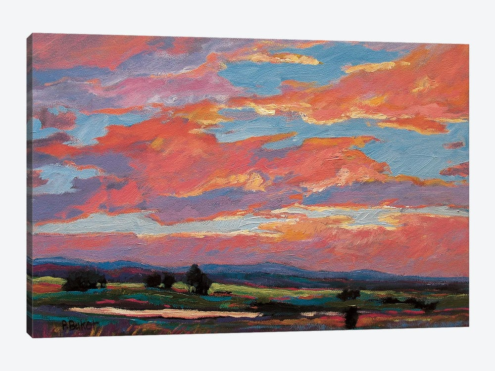 Pink Clouds Over The Foothills by Patty Baker 1-piece Canvas Art Print