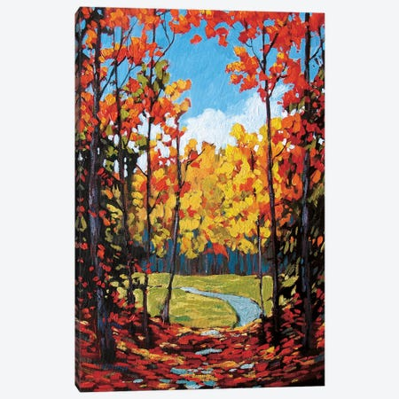Autumn Path in Old Kinderhook II Canvas Print #PTB10} by Patty Baker Canvas Art