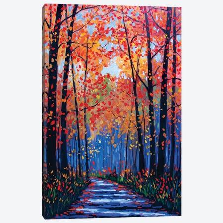 Autumn Path in Old Kinderhook III Canvas Print #PTB11} by Patty Baker Canvas Art