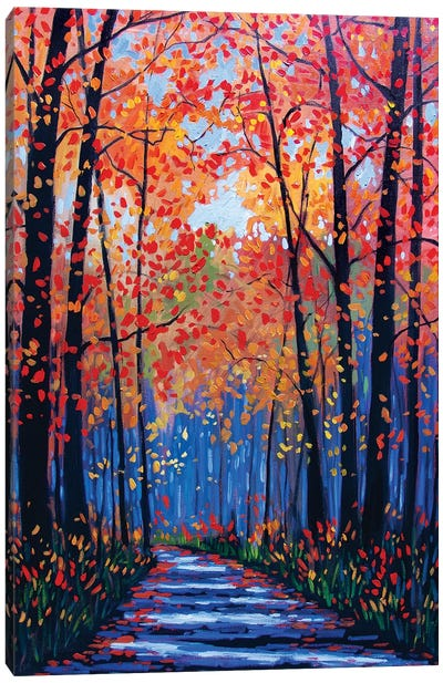 Autumn Path in Old Kinderhook III Canvas Art Print