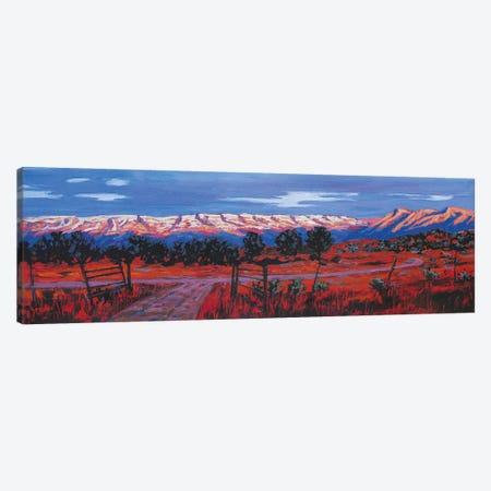Roan Plateau, Colorado Canvas Print #PTB121} by Patty Baker Canvas Art