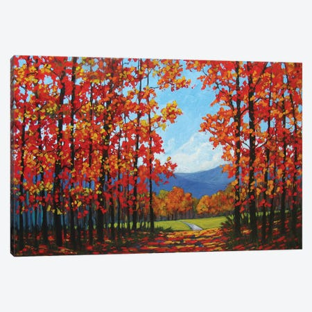 Autumn Path IV Canvas Print #PTB12} by Patty Baker Canvas Art