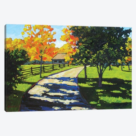 Stevie's Driveway in the Morning  Canvas Print #PTB130} by Patty Baker Canvas Print