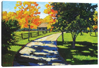 Stevie's Driveway in the Morning  Canvas Art Print