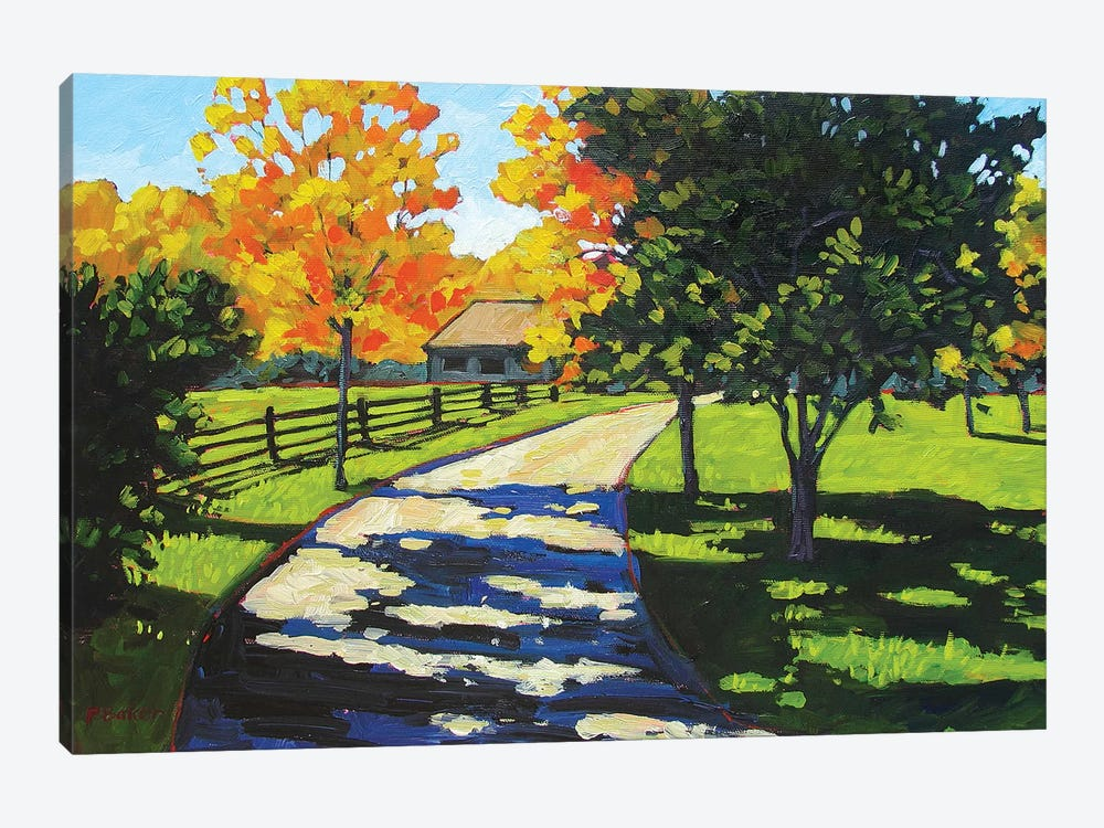 Stevie's Driveway in the Morning  by Patty Baker 1-piece Canvas Artwork