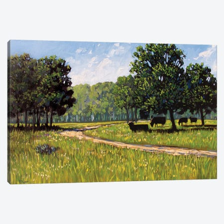Summer High Noon Canvas Print #PTB135} by Patty Baker Canvas Art