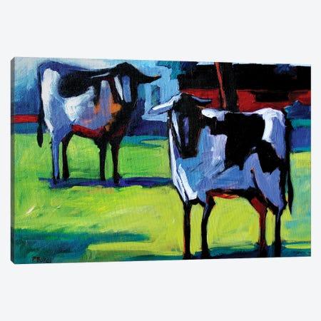 Two Calves Canvas Print #PTB146} by Patty Baker Art Print