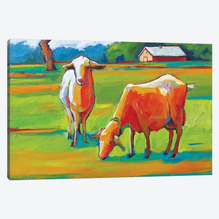 Two Fauve Goats Canvas Print #PTB149} by Patty Baker Canvas Wall Art