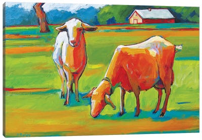 Two Fauve Goats Canvas Art Print