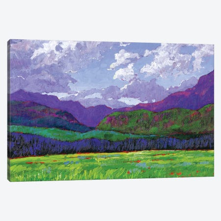 Western Slope Landscape, Colorado 3-Piece Canvas #PTB153} by Patty Baker Canvas Print