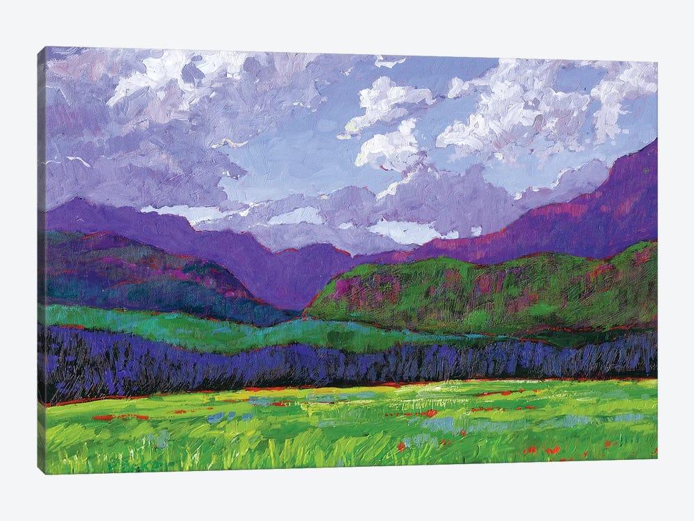 Western Slope Landscape, Colorado by Patty Baker 1-piece Canvas Art Print