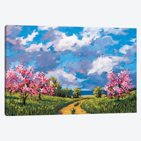 Western Slope Orchard In The Spring Canvas Print #PTB154} by Patty Baker Canvas Art