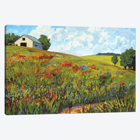 Wildflower Hillside in Boulder County, CO 3-Piece Canvas #PTB156} by Patty Baker Canvas Artwork