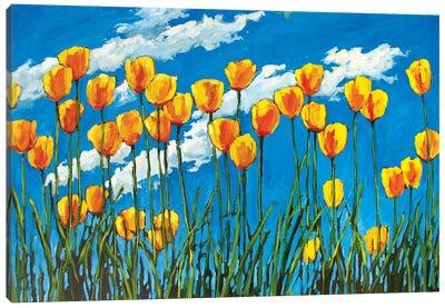 Yellow Tulips on Blue Sky Canvas Art Print